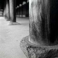 Nara14